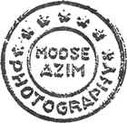 Moose Azim Photography Logo
