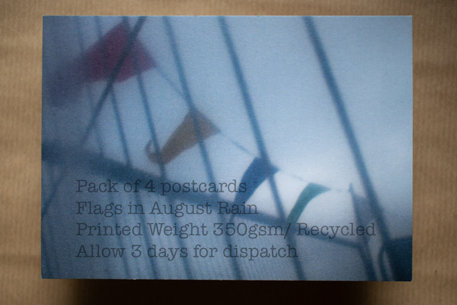 Flags in August Rain #3